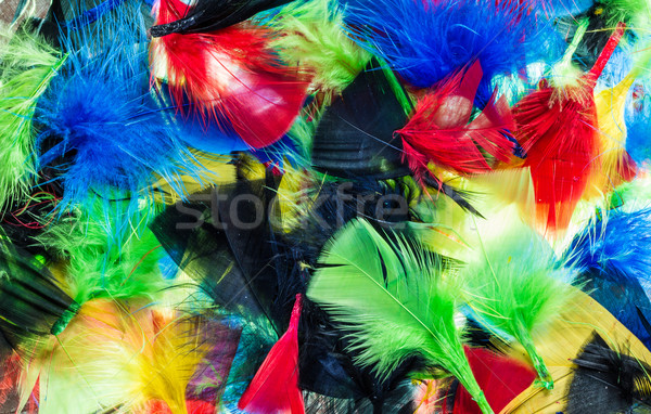 Mixture Color Feathers Stock photo © rghenry