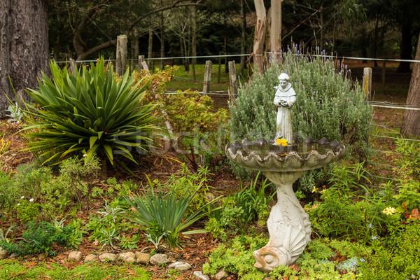 Monnik tuin oude vogel bad standbeeld Stockfoto © rghenry