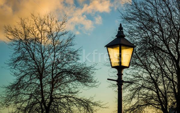 Winter Park Light Stock photo © rghenry