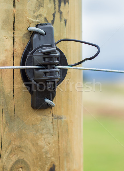 Electric Fence Insulator Stock photo © rghenry