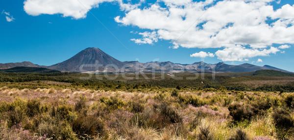 Mt. Ngauruhoe Stock photo © rghenry