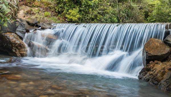Friss tiszta vízesés tiszta víz folyik Új-Zéland Stock fotó © rghenry