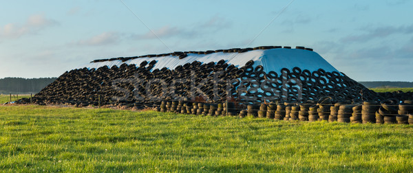 Silage Stack Stock photo © rghenry