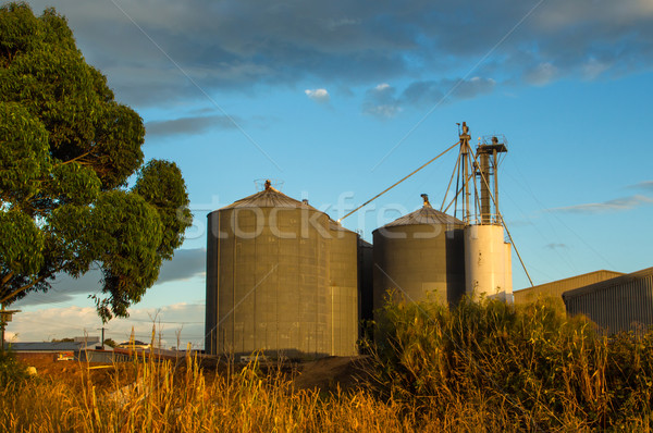 Large Silo's Stock photo © rghenry