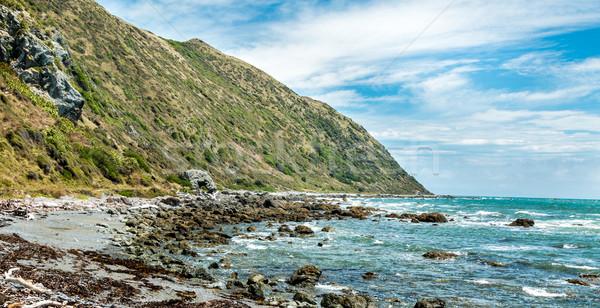 Rock New Zealand kustlijn reserve strand wolken Stockfoto © rghenry