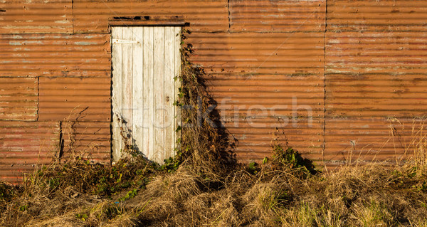 Old Shed Door Stock photo © rghenry