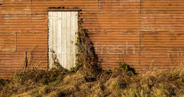 Oude deur groot muur witte Stockfoto © rghenry
