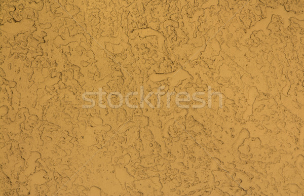 Rough Cast Texture Stock photo © rghenry