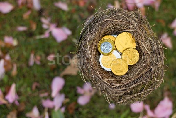 お金 巣 鳥の巣 コイン コイン 銀行 ストックフォト © rghenry