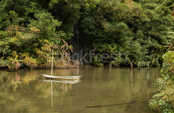 Small Boat Pond Stock photo © rghenry