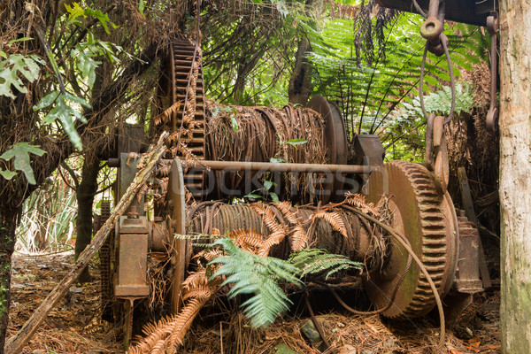 Loging Cable Winch Stock photo © rghenry