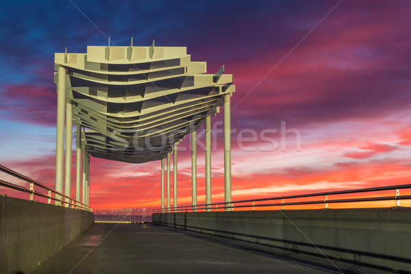 Napier Viewing Platform Sun Up Stock photo © rghenry