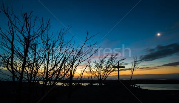 Dead Cross Trees Sunset Stock photo © rghenry