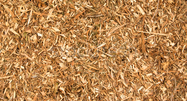 Wood CHips Texture Stock photo © rghenry