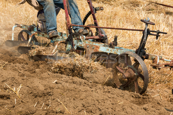 Horse Ploughing Stock photo © rghenry