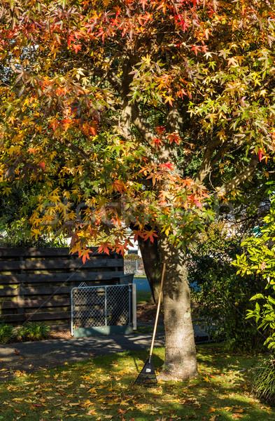 Autumn Garden Work Stock photo © rghenry