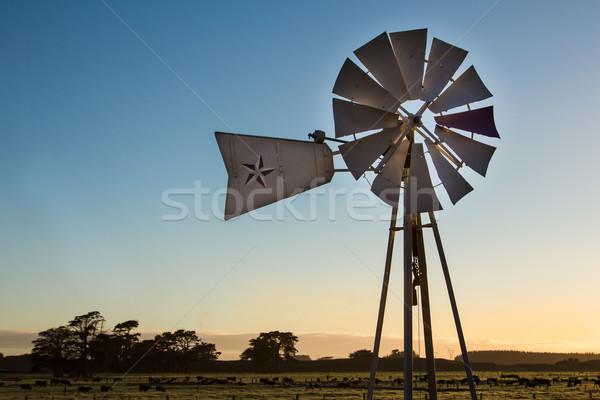 Farm Windmill Stock photo © rghenry