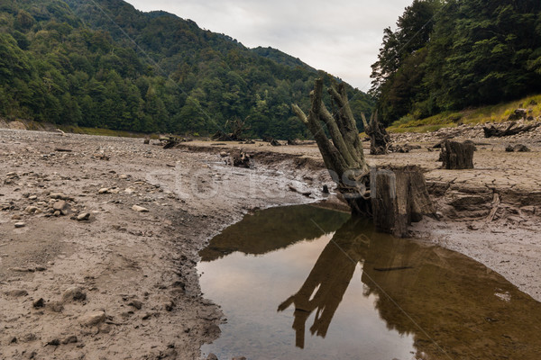 Low Rain Fall Stock photo © rghenry