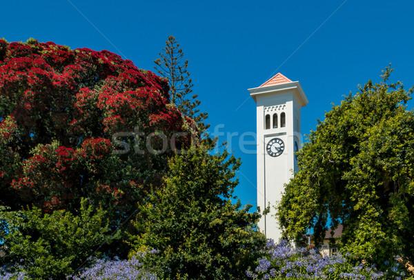 Klok toren stad New Zealand bloem tijd Stockfoto © rghenry