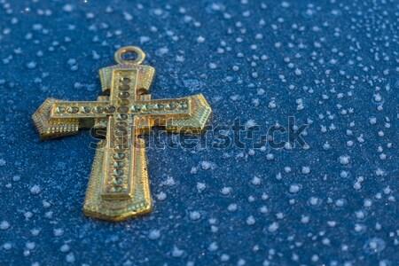 Klein ijs gouden kruis keten Stockfoto © rghenry