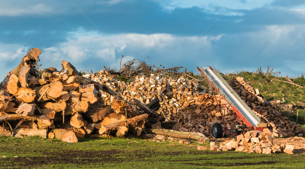 Firewood Stack Stock photo © rghenry
