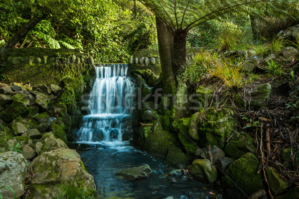 Garden Waterfall Stock photo © rghenry