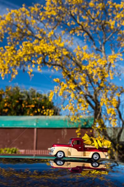 Laden model vrachtwagen boom bloemen natuur Stockfoto © rghenry