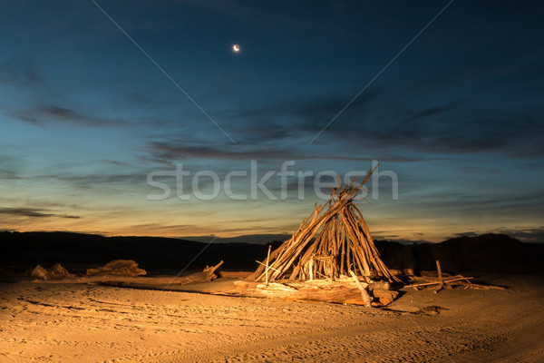 Drift Wood Night Shelter Stock photo © rghenry