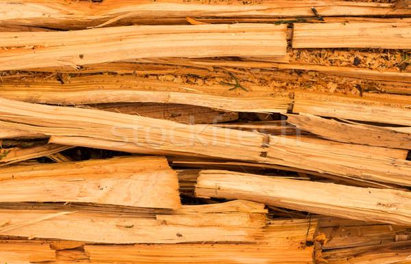 Cupressus macrocarpa Wood Splits Stock photo © rghenry