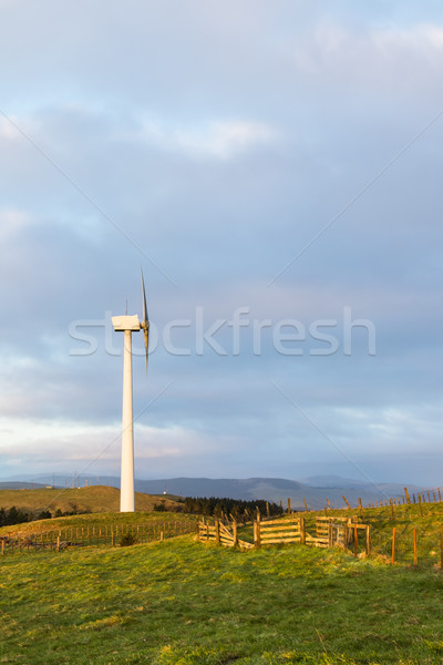 Farming The Wind Stock photo © rghenry
