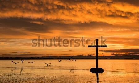 Zachód słońca modlitwy krzyż człowiek modląc kolorowy Zdjęcia stock © rghenry