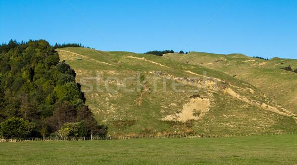 Arazi erozyon iyi örnek Yeni Zelanda Stok fotoğraf © rghenry