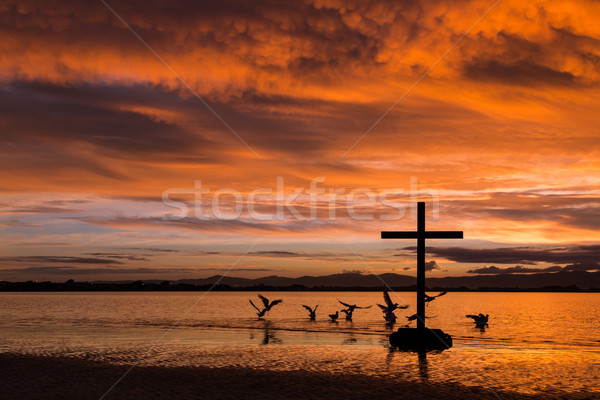 ストックフォト: 鳥 · クロス · 群れ · 飛行 · 夜明け