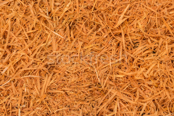 Cupressus Macrocarpa Shavings Stock photo © rghenry