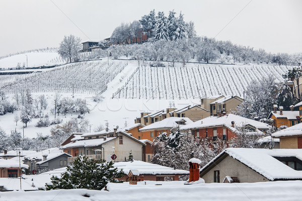 Houses on the hill covered with snow. Stock photo © rglinsky77