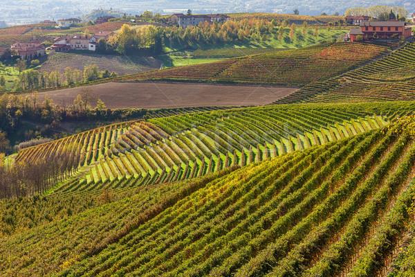 őszi dombok Olaszország zöld citromsárga narancs Stock fotó © rglinsky77