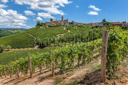 Vineyards and small town. Castiglione Falletto, Italy. Stock photo © rglinsky77