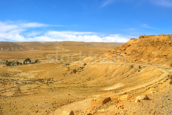 Rocky hill and valley at Negev desert in Israel. Stock photo © rglinsky77