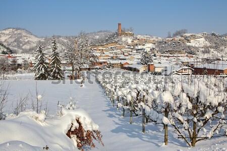 Małe miasto śniegu Włochy drzew domów Hill Zdjęcia stock © rglinsky77