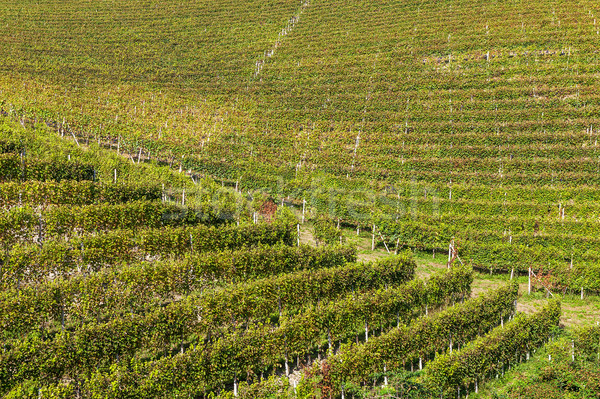 Италия пейзаж осень Сток-фото © rglinsky77