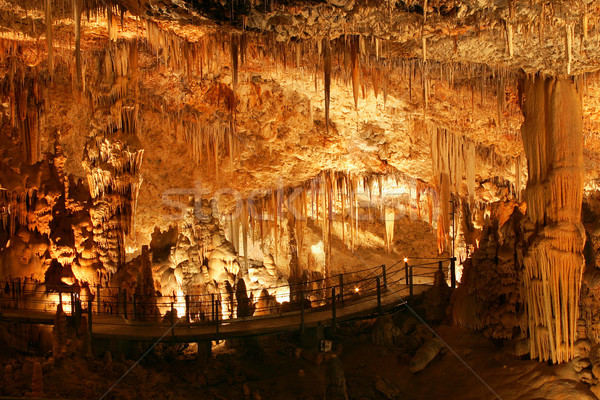 Barlang kilátás fény Föld alagút turizmus Stock fotó © rglinsky77