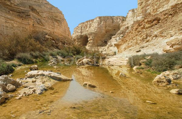 Ein Avdat Canyon. Israel. Stock photo © rglinsky77