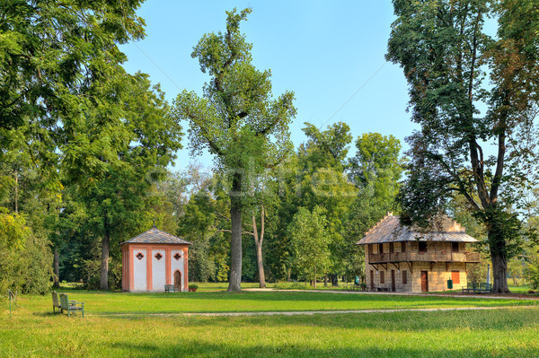 Green lawns among trees in Racconigi Park, Italy. Stock photo © rglinsky77