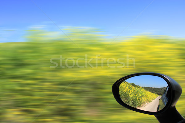Driving in the car. Stock photo © rglinsky77