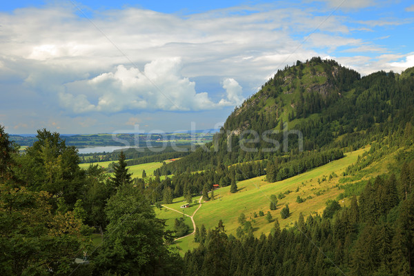 Photo stock: Collines · Allemagne · vert · belle · route