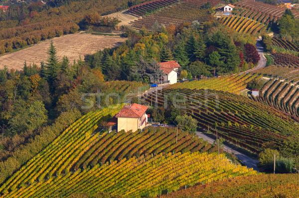холмы Италия сельский дома Сток-фото © rglinsky77