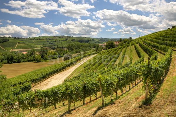 Tepeler İtalya görmek güzel şarap manzara Stok fotoğraf © rglinsky77