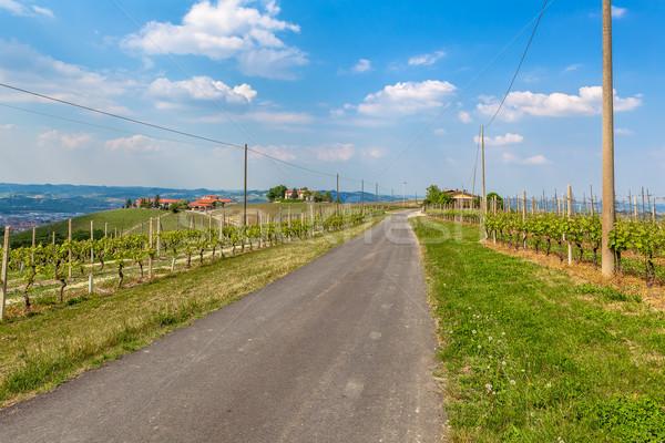 Strada Italia stretta verde bella cielo blu Foto d'archivio © rglinsky77