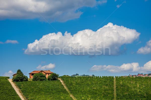Ver verde verão vermelho rural casa Foto stock © rglinsky77