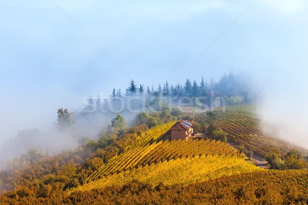 Sonbahar tepeler sabah sis kırsal ev Stok fotoğraf © rglinsky77